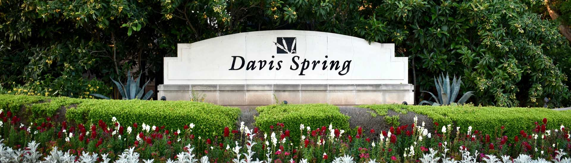 Davis Spring Neighborhood